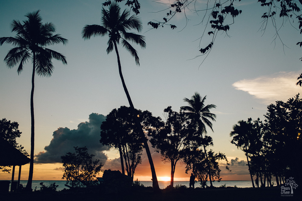 Sunset in Bayahibe, Dominican Republic with man and palm trees in silhouette