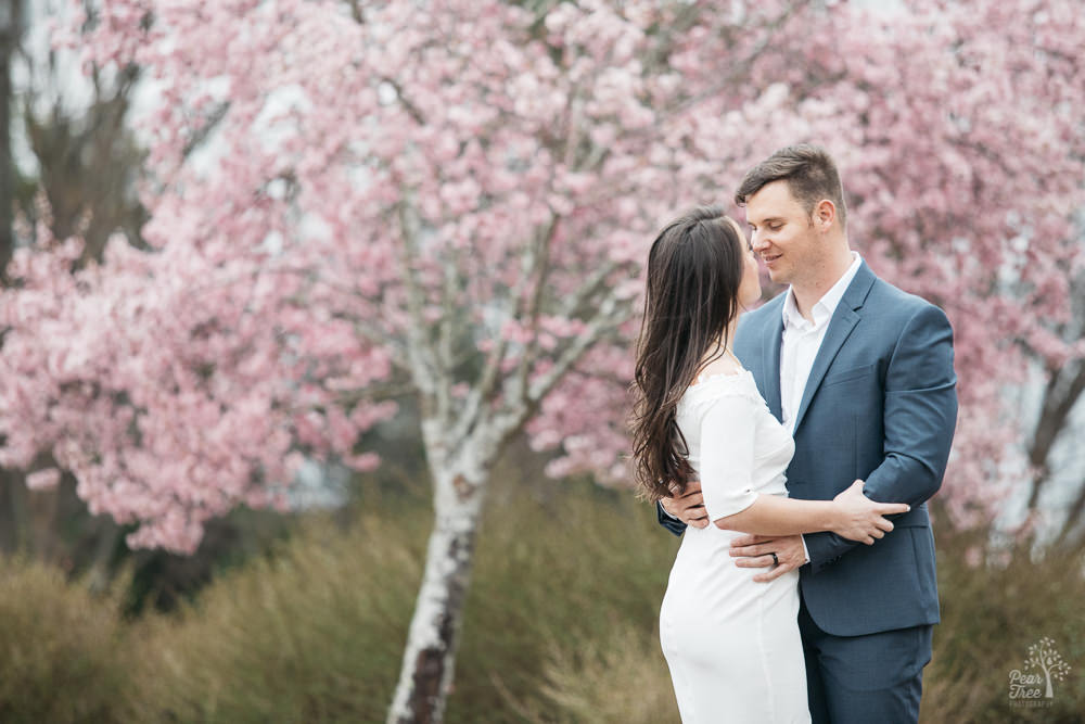 Romantic engaged couple holding each other in front of blossoming cherry tree