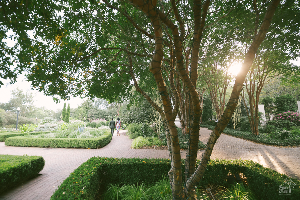 Two black women holding hands and walking through a garden while the sun sets.